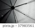 雨 雨ふり 雨が降っての写真 37983561