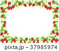 苺 果物 花のイラスト 37985974