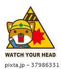 犬 頭上注意 作業員のイラスト 37986331