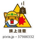 犬 頭上注意 作業員のイラスト 37986332