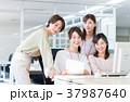 オフィス 女性 4人の写真 37987640
