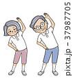 シニア ストレッチ 体操のイラスト 37987705