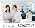 女性 人物 オフィスの写真 37987717