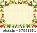苺 果物 花のイラスト 37991851