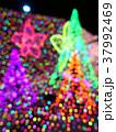 光の幻想 37992469