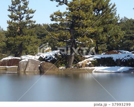 稲毛海浜公園の池の雪景色 37993299