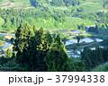 棚田 田 田んぼの写真 37994338