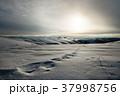 ウィンター ウインター 冬の写真 37998756