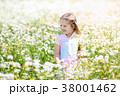 子 子供 グリーンの写真 38001462