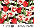 フラワー 花 チューリップのイラスト 38001926
