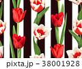 花 チューリップ チューリップのイラスト 38001928