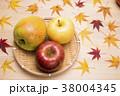 リンゴ 秋 紅葉の写真 38004345
