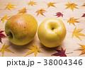リンゴ 秋 紅葉の写真 38004346