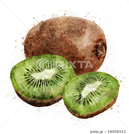 Kiwi on white background. Watercolor illustration 38008453