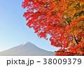 富士山 山 秋の写真 38009379