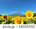 富士山 青空 夏の写真 38009382