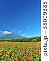 富士山 青空 夏の写真 38009385