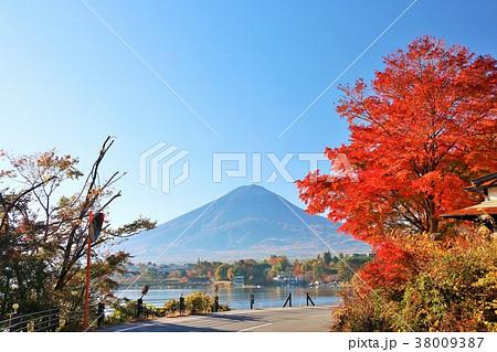 山梨県 湖北ビューラインからの富士山と紅葉 38009387