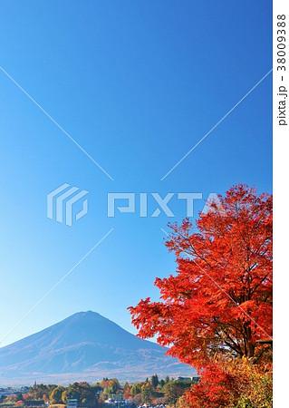 富士山と秋の紅葉 38009388