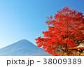 富士山 山 秋の写真 38009389