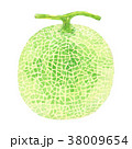 メロン 水彩 38009654