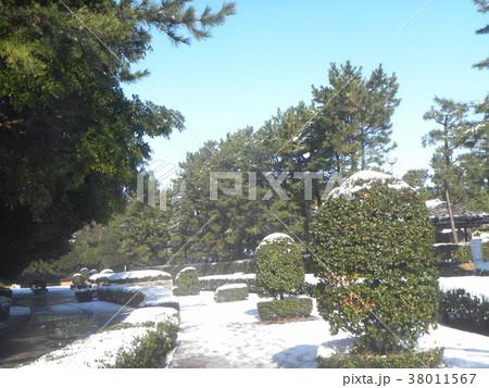 雪の日の稲毛海浜公園の通路 38011567