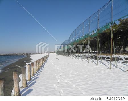 雪の日の稲毛海岸真っ白な風景 38012349