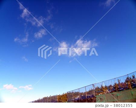 雪の日の稲毛海岸真っ白な風景 38012355
