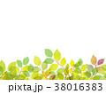 葉っぱ 背景 葉のイラスト 38016383