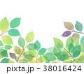 葉っぱ 背景 葉のイラスト 38016424