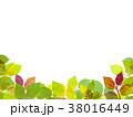 葉っぱ 背景 葉のイラスト 38016449