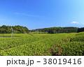 静岡県 富士宮 初夏の写真 38019416