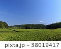 静岡県 富士宮 初夏の写真 38019417