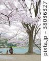 桜 ペット 犬 38036327