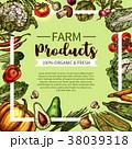 野菜 マッシュルーム 食のイラスト 38039318