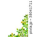 葉っぱ 背景 葉のイラスト 38041711