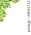 葉っぱ 背景 葉のイラスト 38041712