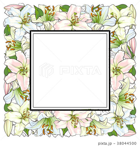 Vector hand drawn tulip square frame 38044500