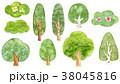樹木 セット素材 38045816
