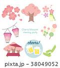 お花見 38049052
