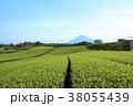 富士山 茶畑 畑の写真 38055439
