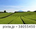 富士山 茶畑 畑の写真 38055450