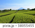 富士山 茶畑 畑の写真 38055455