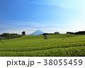 富士山 茶畑 畑の写真 38055459