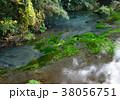 風景 柿田川 川の写真 38056751