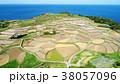 棚田 田んぼ 田園の写真 38057096