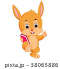 動物 ブック 書籍のイラスト 38065886