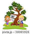 かわいい キュート 可愛いのイラスト 38065926