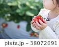 苺狩り (子供 幼児 女性 イチゴ いちご 苺 フルーツ 果物 レジャー ビニールハウス デザート) 38072691