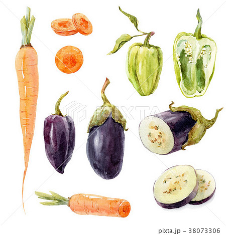 Watercolor vegetable set 38073306